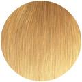 svetla-blond.jpg